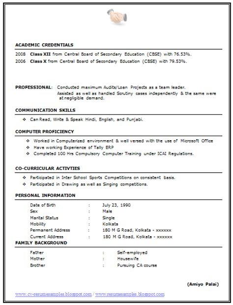 excellent examples of cv over 10000 cv and resume samples with free download best