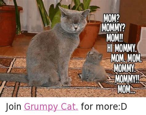Cat Mom Meme - 25 best memes about mommy mom mommy mom memes