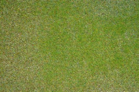 Noch Grass Mat by Discontinued N00250 Noch Static Grass Mat Green