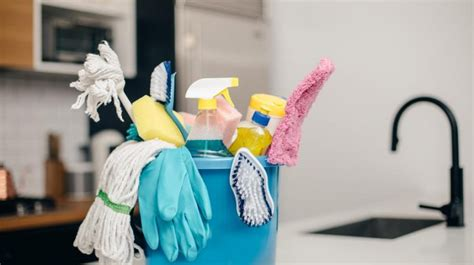 clean your dirty apartment the cleaning guide apartment