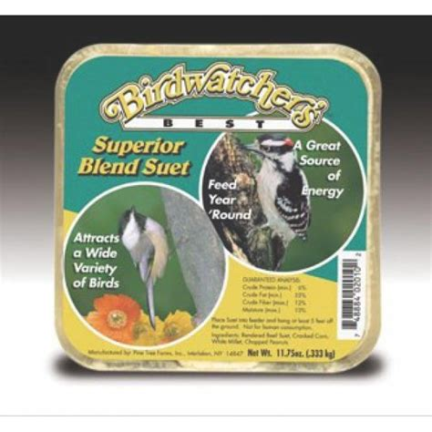buy bulk superior blend wild bird suet case of 12 wild