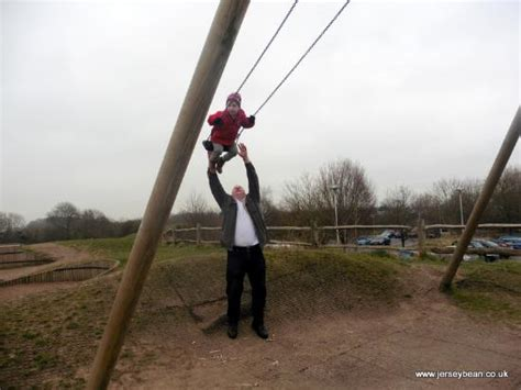 how popular is swinging he called this the ladder picture of worcester woods