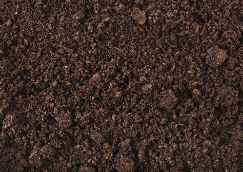 Rasen Kalken Zeitpunkt 5001 by Rasen Kalken Vorgehen Zeitpunkt Nutzen Plantura