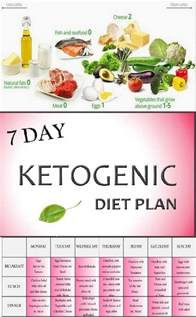 14 days keto meal plan easy guide for rapid weight loss books best 25 ketogenic diet epilepsy ideas on