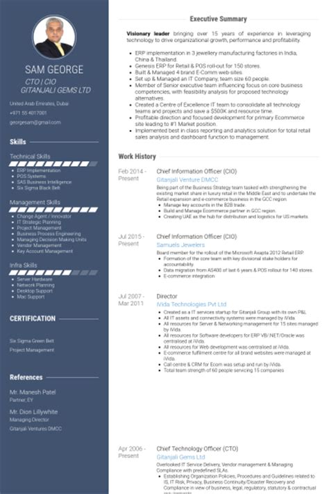 chief information officer resume sles visualcv resume sles database