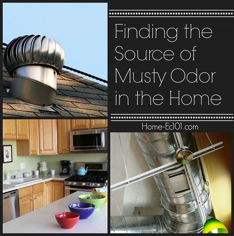 musty smell in bathroom mold smell in bathroom musty odor in a home