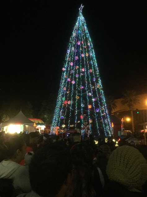 top 28 san jose christmas tree lighting newly released