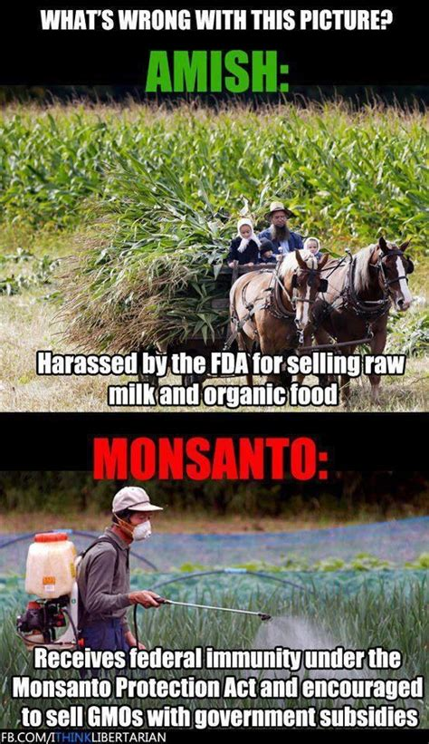 Amish Meme - truth what s wrong with this picture amish farmers