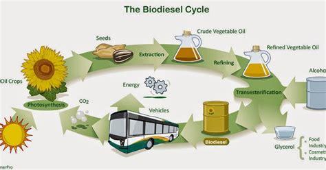 contoh bio solar chemistry in line contoh makalah biodiesel
