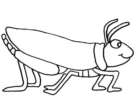 Preschool Grasshopper Coloring Pages | grasshopper coloring pages for kids preschool and