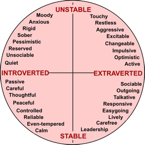 best 25 introvert vs extrovert ideas on extrovert meaning introvert personality
