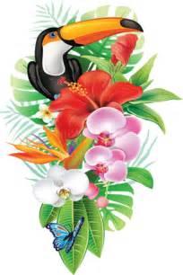 0 cc5de aabb6ebc xxxl png kwiaty ilustracje pinterest