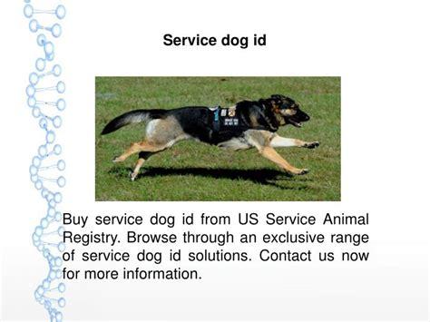 usa service dogs ppt usa service dogs registry powerpoint presentation id 7486650