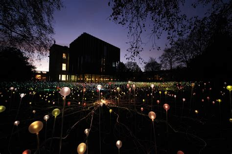 Field Of Light by Bruce Munro Field Of Light At The Holburne Museum
