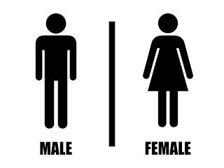 vector toilet male female format cdr png dodo