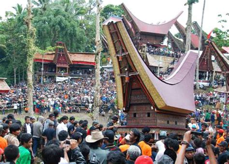 Tshirt Toraja Indonesia Pa Tedong toraja special funeral rambu ceremony go celebes