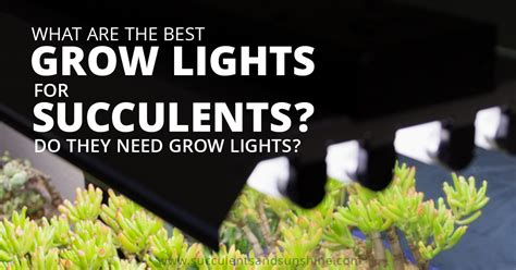 Best Grow Lights by Best Grow Lights Led Light For Plants A Compact T5