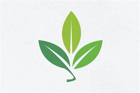 illustrator tutorial leaf adobe illustrator logo design tutorial leaf logo design