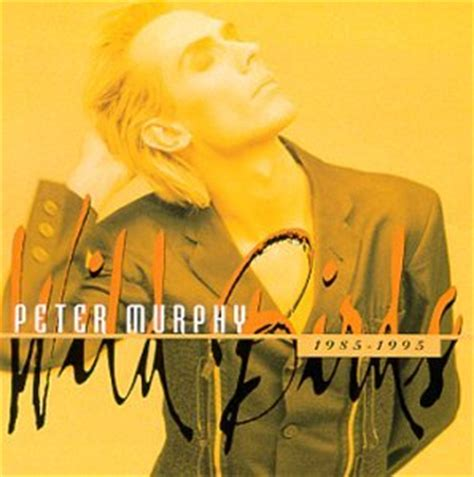 lyrics eye pattern blindness pond peter murphy lyrics lyricspond