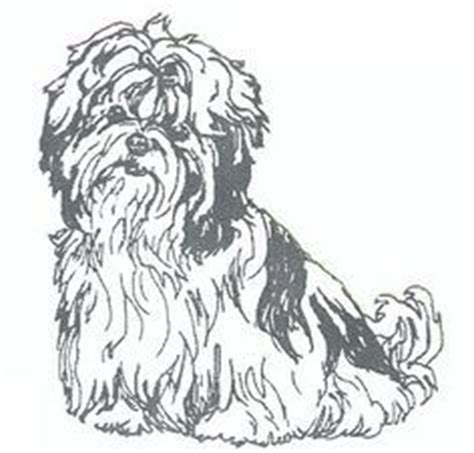 shih tzu coloring book shih tzu silhouette instant machine embroidery design pattern awesome