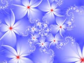 winter flowers summer flower winter flowers