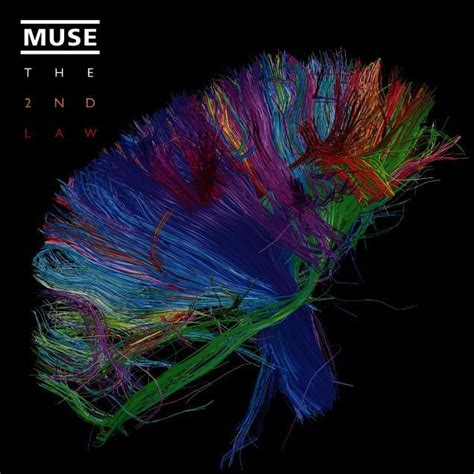 best muse albums 25 best ideas about muse album on muse muse