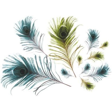 peacock feather wall sticker peacock feathers wall decal for the home garden