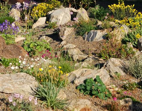 Ideas For Rock Gardens Alpine Garden Ideas House Beautiful Design