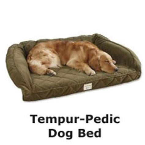 tempur pedic dog beds memory foam pet bed for 23 000 vs tempur pedic dog bed