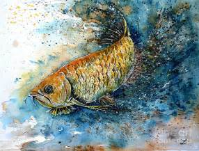 Arowana Fish Drawing Arowana paintings   golden