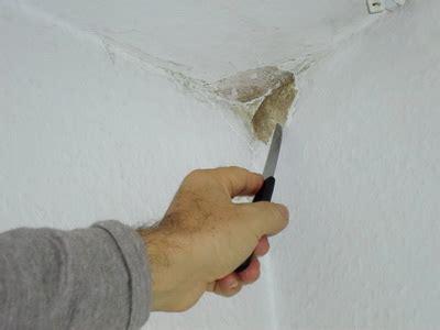 Feuchtigkeit In Der Wand Entfernen by Schimmel Entfernen Wand Tipps Vom Schimmelgutachter