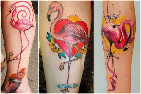 flamingo tattoos interesting things about flamingo you must
