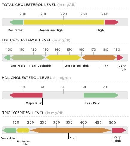 understanding the ldl hdl cholesterol ratio knowzo