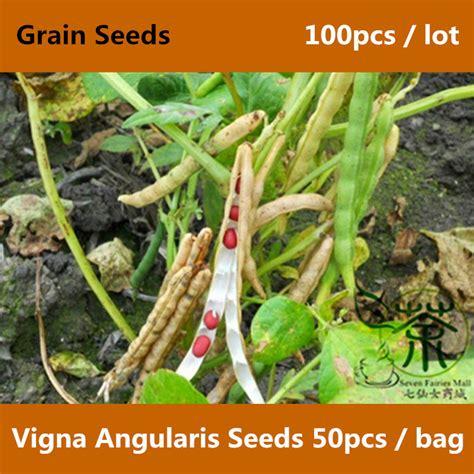 Adzuki Bean 100 Gr compare prices on adzuki beans shopping buy low price adzuki beans at factory price