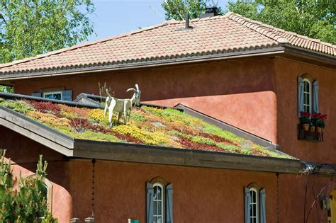 living roof michigan grass roofs across the globe 54 pics
