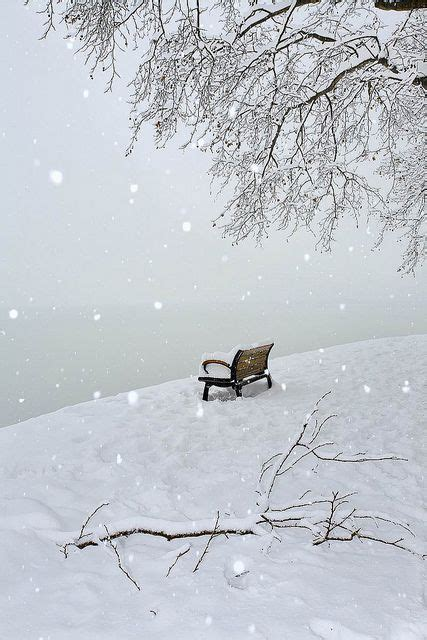 bench winter winter benches and snowy day on pinterest