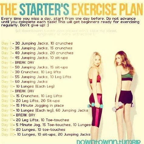 best 25 starter workout plan ideas on starter