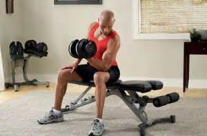 bowflex selecttech adjustable bench series 3 1 bowflex selecttech adjustable bench series 3 1 vs 5 1