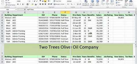 tutorial excel starter 2010 how to freeze rows in excel 2010 starter electrical nate