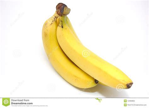 tiny banana a small bunch of bananas royalty free stock photo image