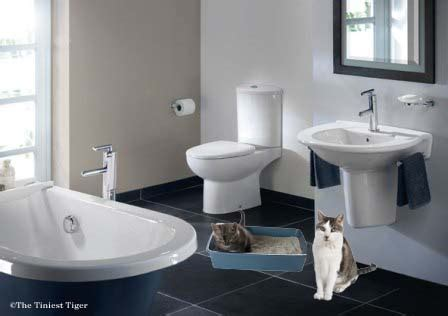 Litter Box Bathroom by 10 Reasons Your Cat Might Be Going Outside The Litter Box