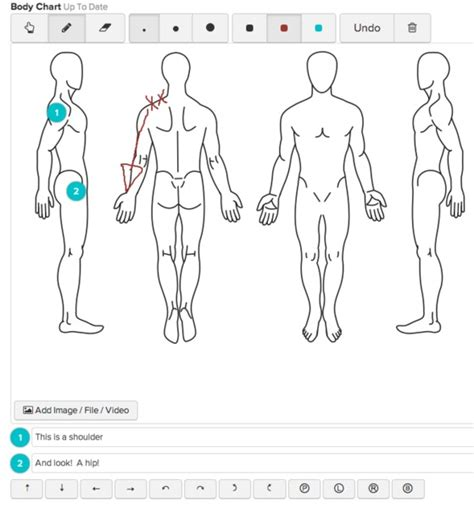 blank acupuncture human body diagram blank body chart