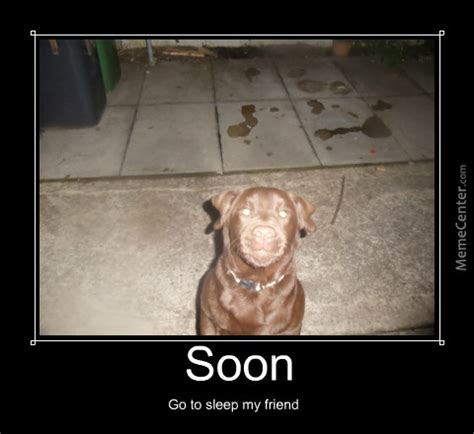 soon smile dog by mrcactus meme center