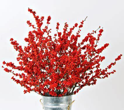 winterberry stems set   stems white flower farm