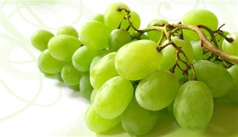 las doce uvas verde mexican kitchen cantina
