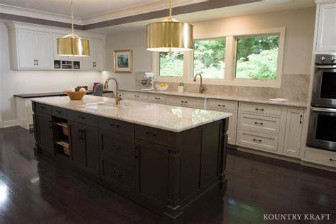 Kitchen Cabinets Arlington Va Muddled Basil Kitchen Island Cabinets In Alrington Virginia