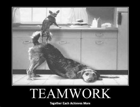 Teamwork Memes - pin by kainer weissmann on fun jokes memes pinterest