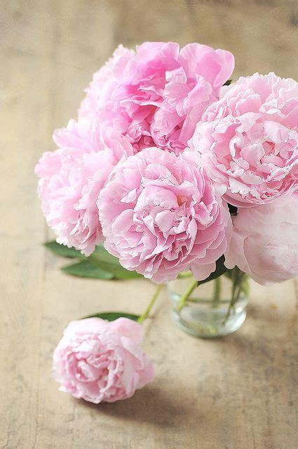 1325003905 fleurs tropicales calendrier anniversaire other flowers