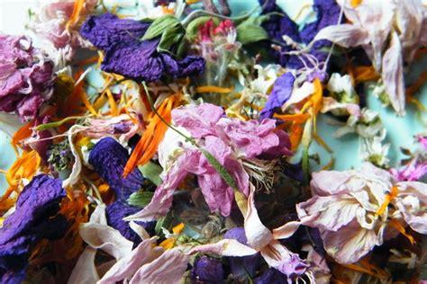 fiori essiccati conservare fiori secchi fiori secchi conservazione