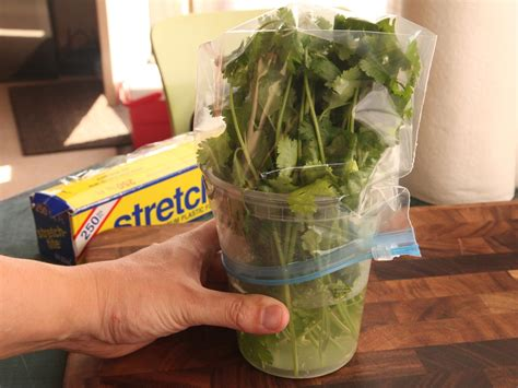 the best way to store fresh herbs serious eats